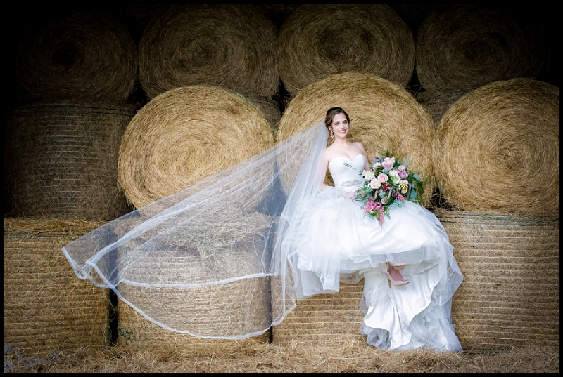 stunning bride on hay bales with veil flowing